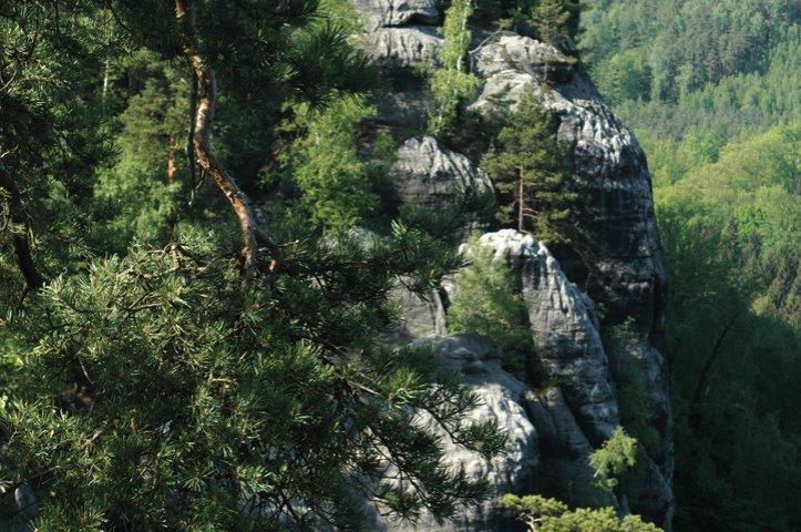 Saxon Switzerland Germany Landscape