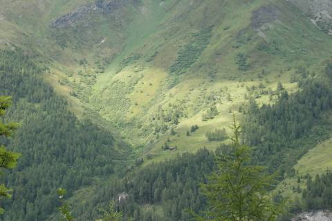 austria, alps, hiking, teichschnitzertal wandern, berg