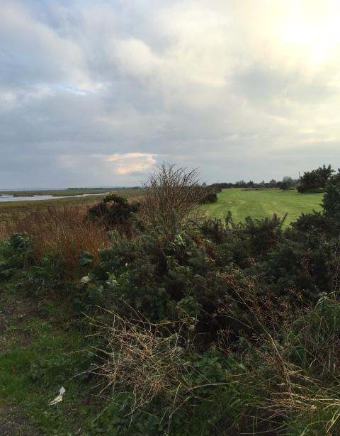 coastal walk, ireland, ireland east coast, travel, hiking